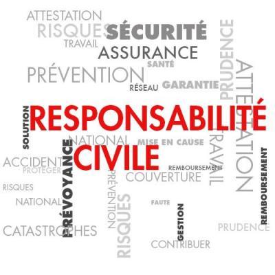 Img resp civile pro